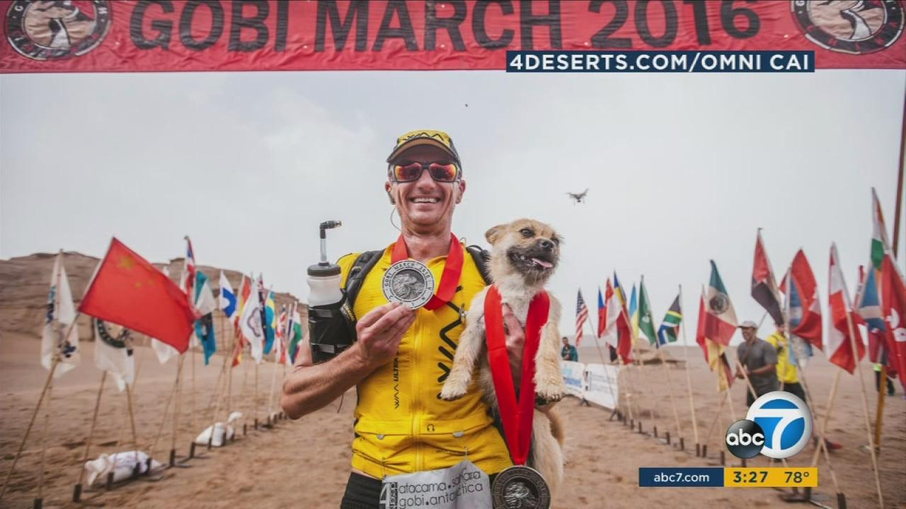 Ultramarathoner Dion Leonard has adopted Gobi, a dog who faithfully kept up for 77 miles as he ran through China.