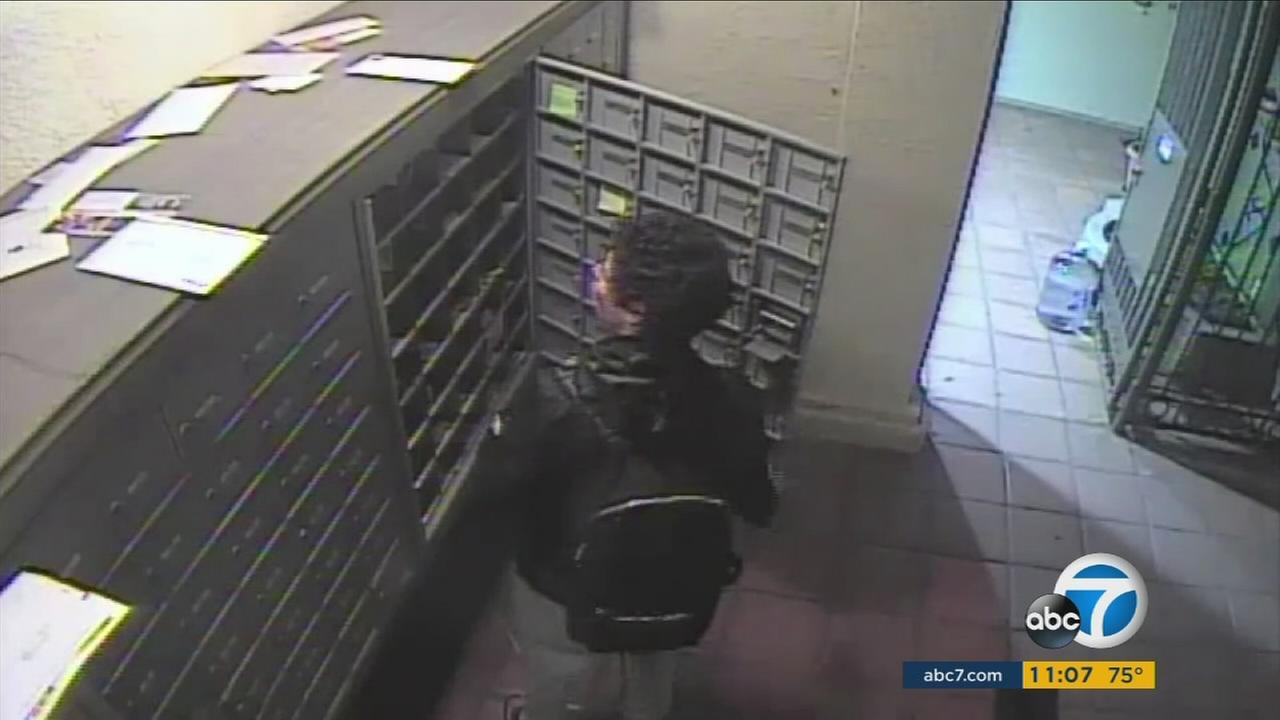 A mail theft suspect is shown taking mail from a mailbox in a Pasadena condominium complex.