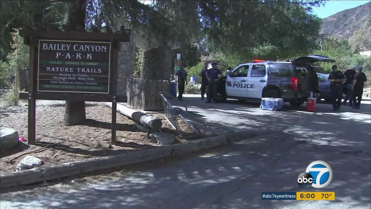 A man survived being attacked by a bear in Sierra Madres Bailey Canyon Wilderness Park on Monday, Oct. 10, 2016.