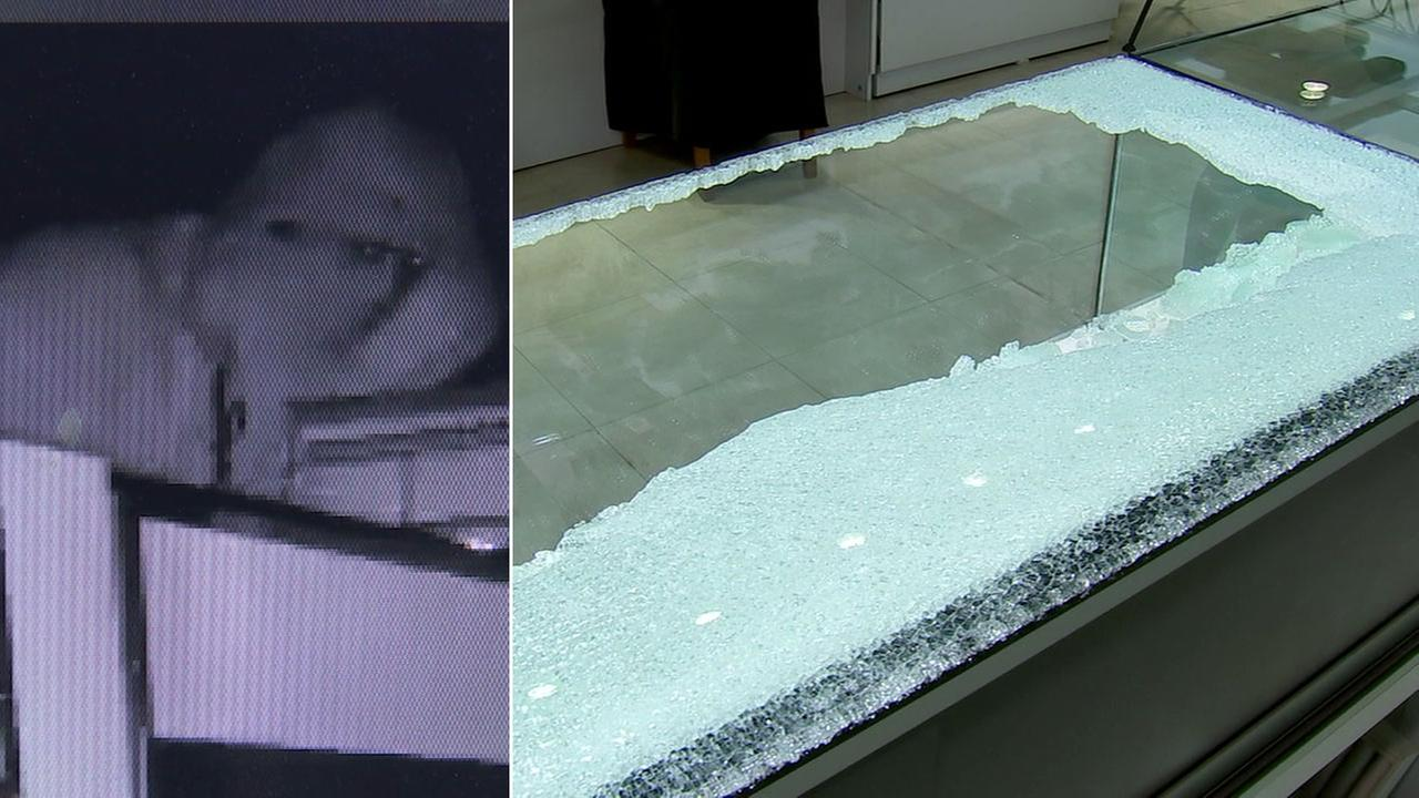 Surveillance footage partially shows a suspects face during a Westlake Village burglary and the damage afterwards on the glass cases.