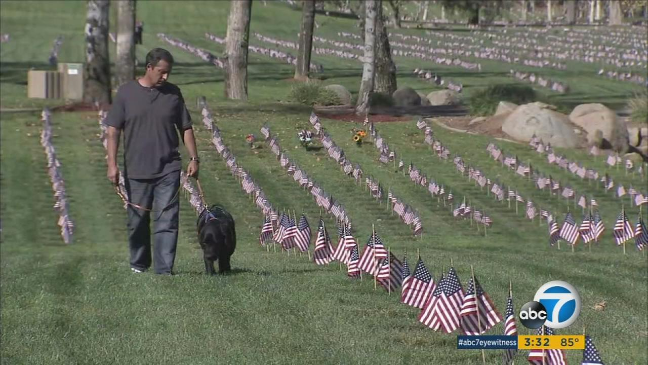 Retired Master Sgt. Richard Mosley is shown walking his dog through a cemetery honoring veterans.
