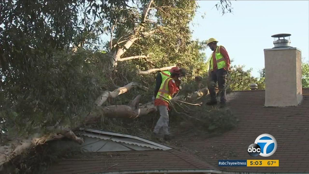 LADWP crews work to remove a tree from the top of a Granda Hills home after winds knocked it down on Tuesday, Dec. 27, 2016.