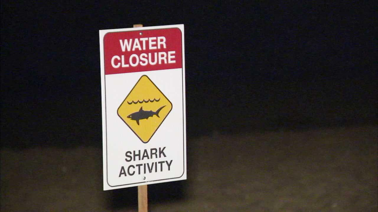 A sign warns of shark activity in this undated file image.