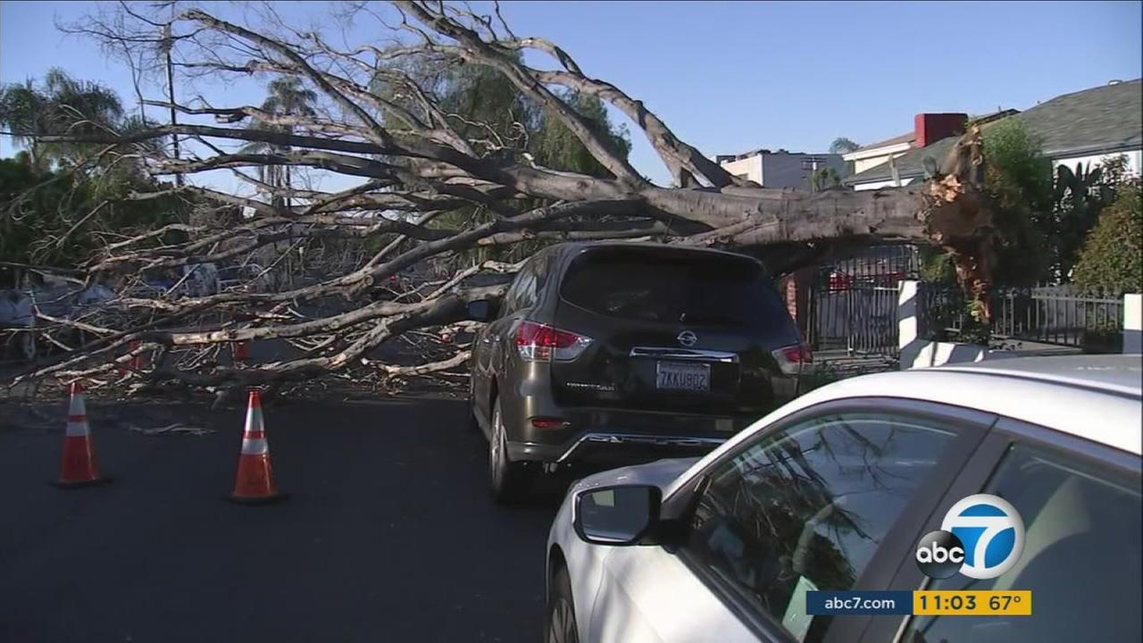 Powerful winds blew over trees and billboards causing damage to cars and homes in Southern California on Thursday, March 30, 2017, and Friday, March 31, 2017.