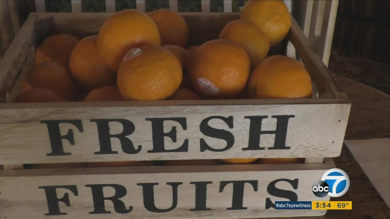 Pixie tangerine season has arrived early in Ojai to the delight of many.