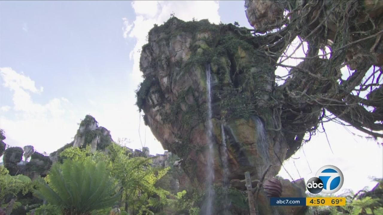 Pandora - World of Avatar is shown in a photo during a preview event at Disney World.