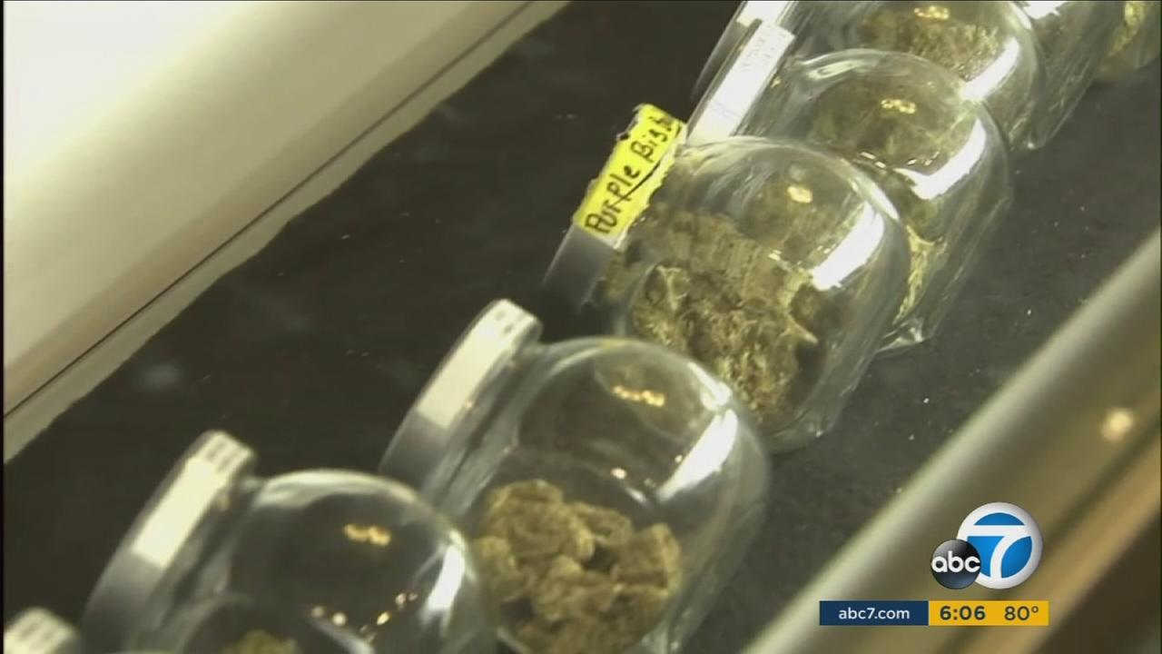 Assembly Bill 110 passed Californias Senate Thursday. Part of that means the possibility of legalizing weed festivals at local fairgrounds.