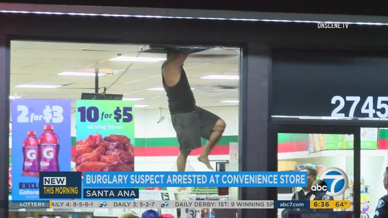 A suspect seen busting through a ceiling before being caught by police at a 7-Eleven in Santa Ana on Thursday, June 15, 2017.