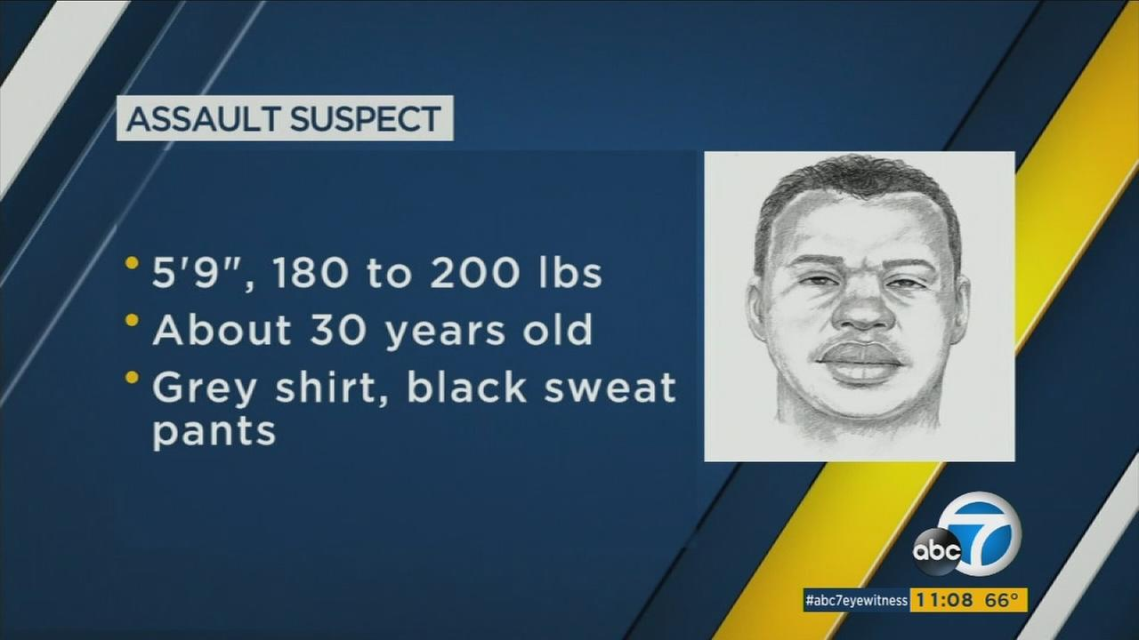 A police sketch depicts the suspect in a Manhattan Beach sexual assault.
