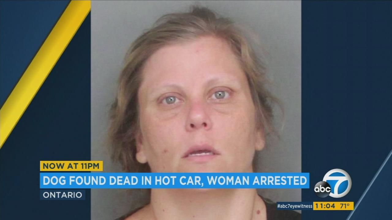 A woman was arrested and charged with animal cruelty after Humane Society and SCPA officers found one dead dog and two more animals in distress inside a hot car in Ontario, authorities said.