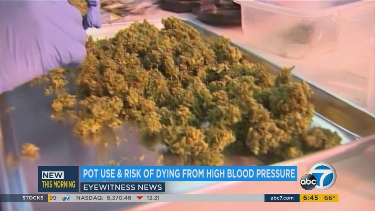 A just-released study found that people who smoke pot have a three times greater risk of dying from hypertension or high blood pressure.