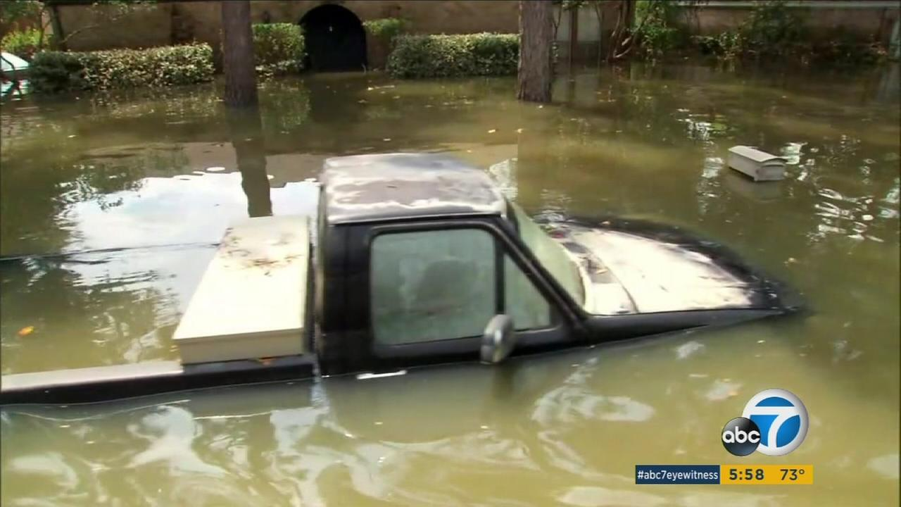 Part of the cleanup in the wake of Hurricane Harvey in Texas and Hurricane Irma in Florida involves lots of flood-damaged vehicles.