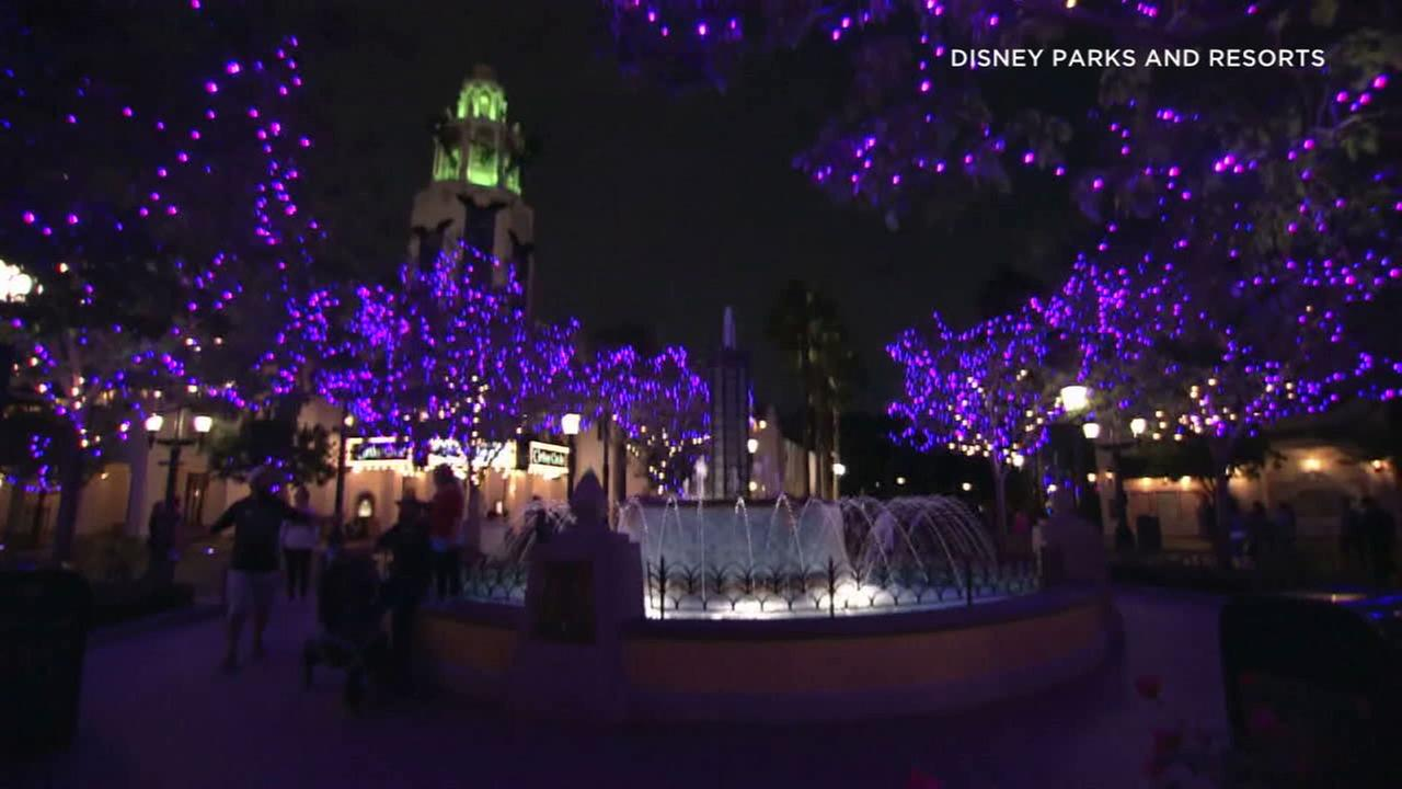 Purple lights cover part of Disneys California Adventure Park in Anaheim during Halloween Time.