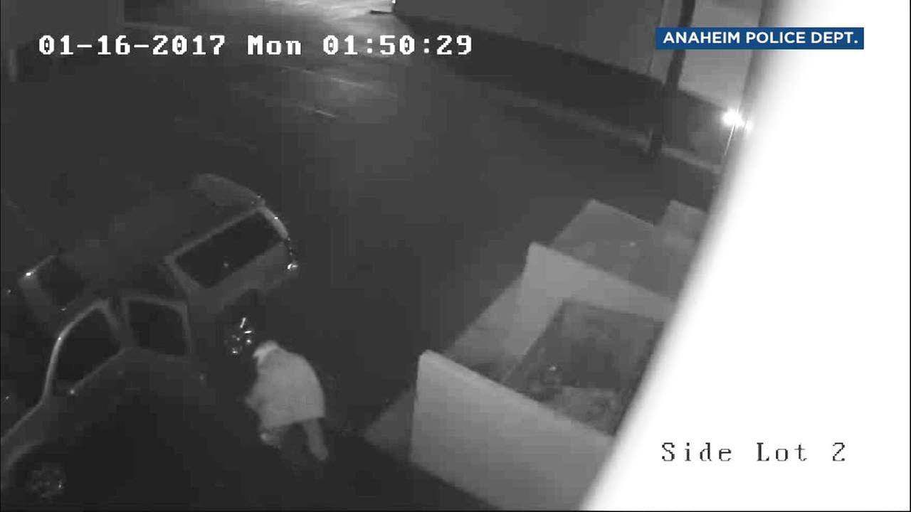 This surveillance image shows suspects dumping a body in Anaheim in January 2017.
