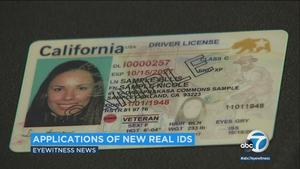 new california resident drivers license
