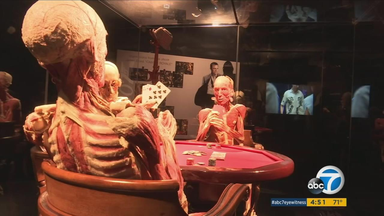 Presently, four different exhibits are on tour and they have inspired many people to become donors, but BodyWorlds isnt taking any more applications.