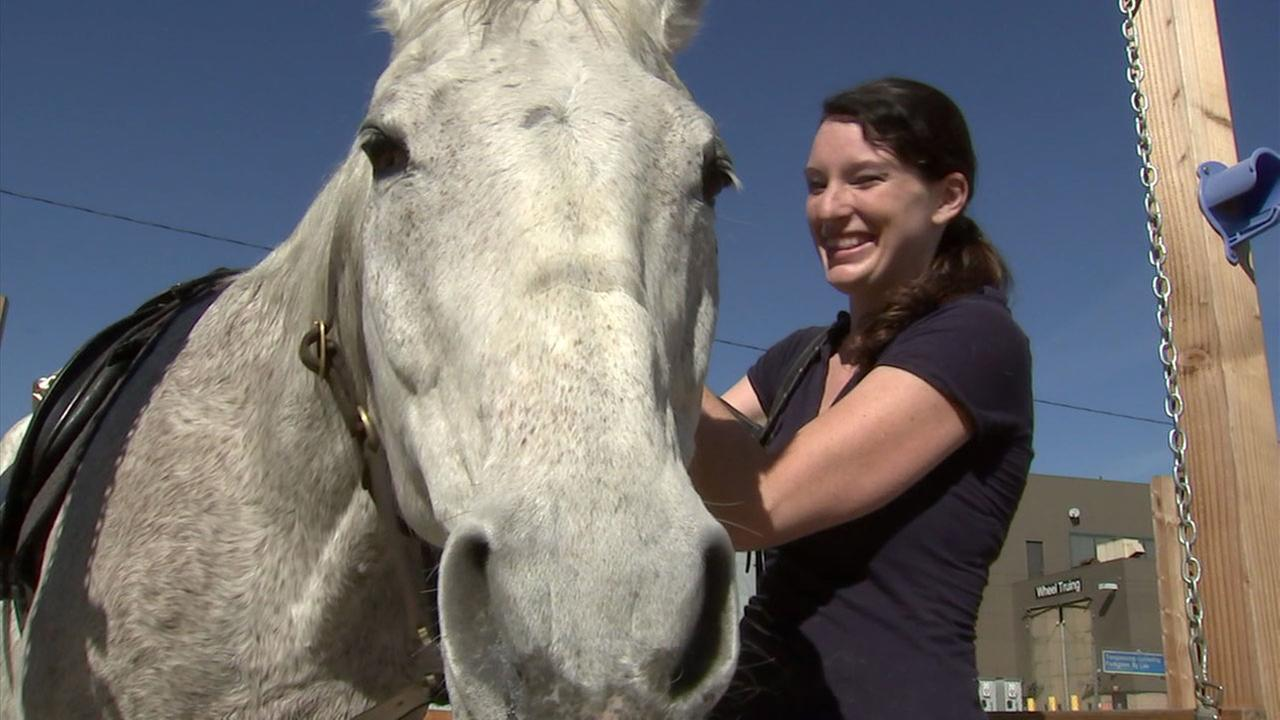 U.S. Navy veteran Abbie Johnson smiles as she takes care of a horse at the Horses for Forces program in Long Beach.