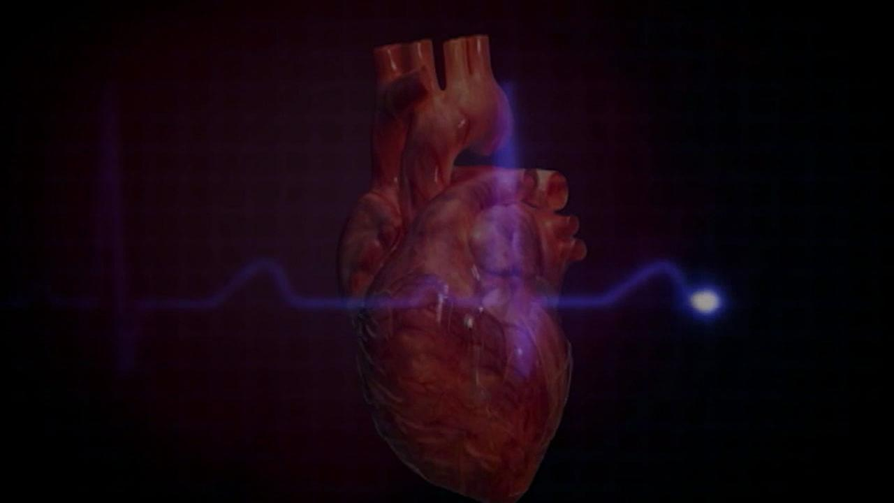 A simulated heart with an electronic beat symbol is shown in a file photo.