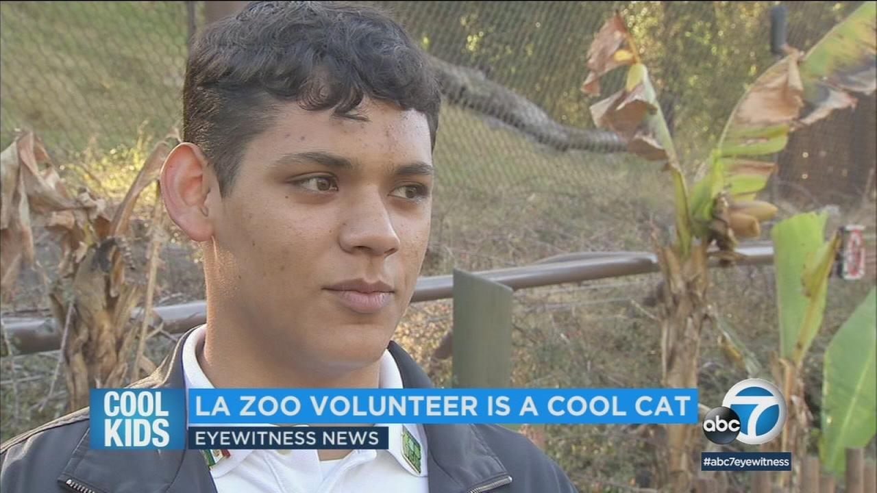 One of Diego Osornios favorite animals at the LA Zoo is the jaguar, and he says he was in awe the first time he saw them.