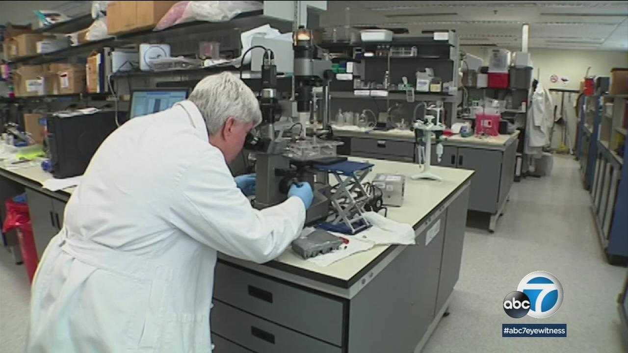A medical researcher is shown looking into an item under a mircroscope.