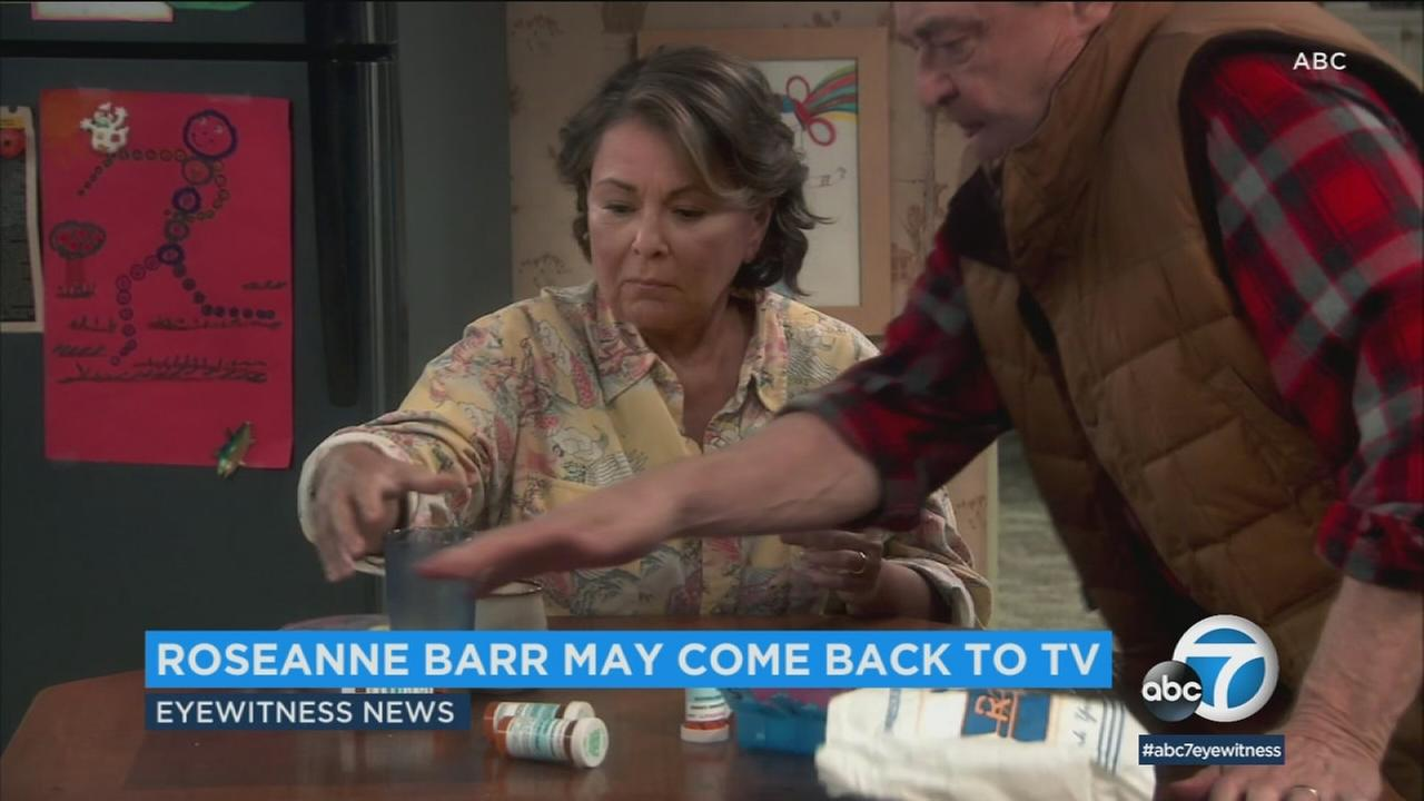 Roseanne Barr says she likes an offer shes received to return to television.