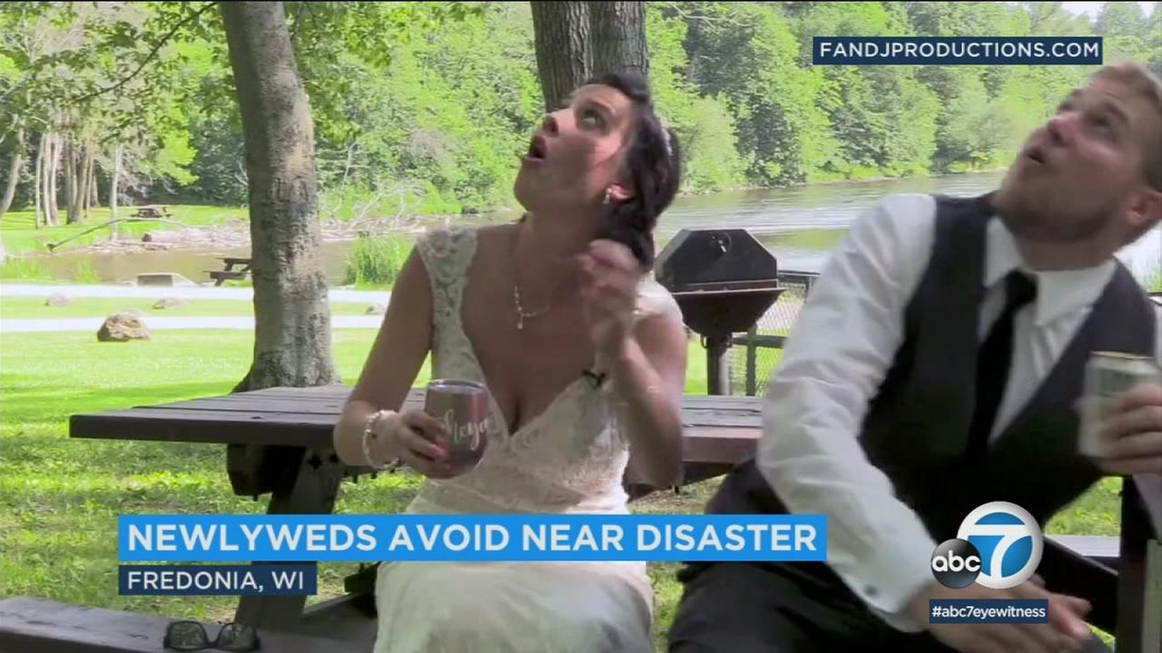 Wisconsin newlyweds barely escaped as a tree branch came crashing down onto a table they were sitting at while taping an interview.