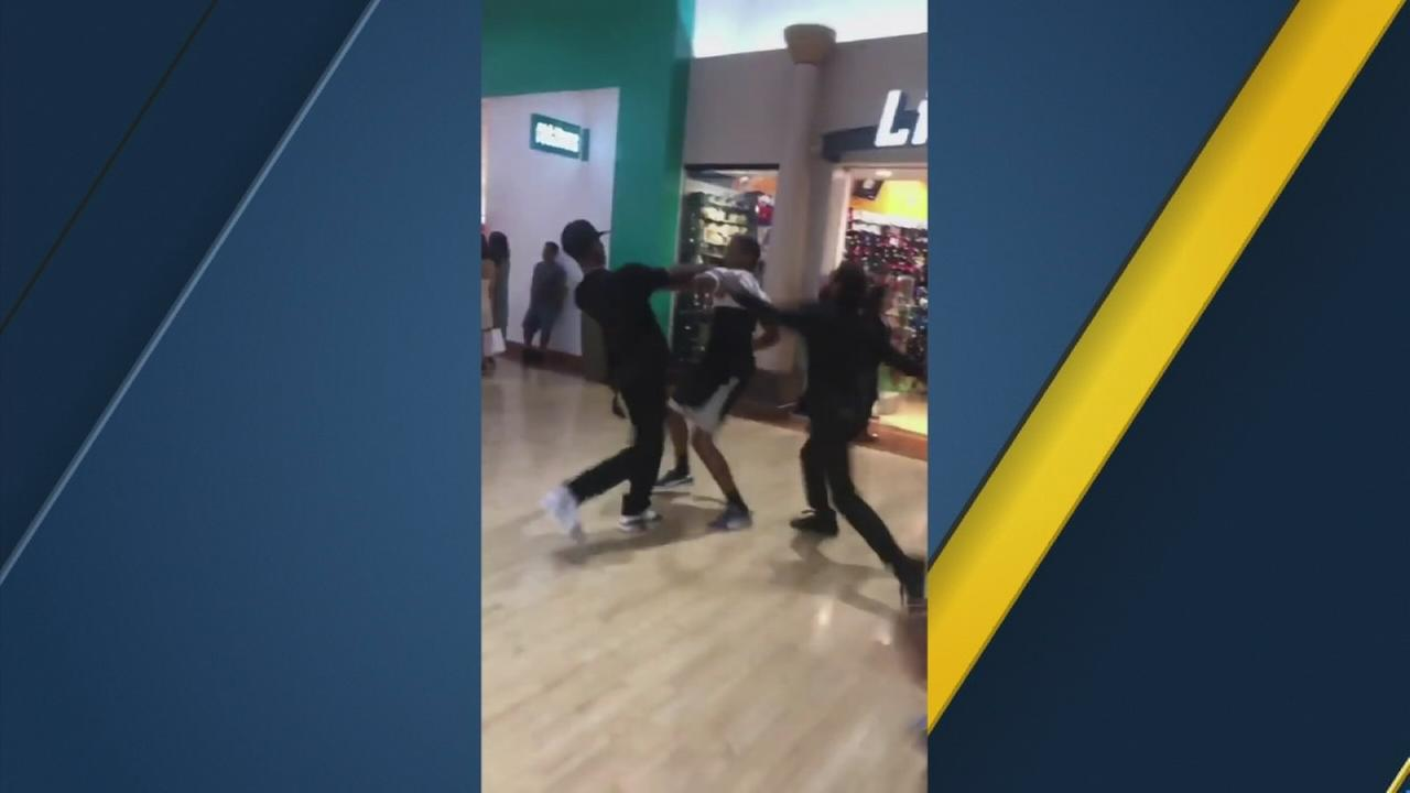 Witness video of the fight shows a group of men getting into a confrontation in front of stores and then continuing the fight at the food court.