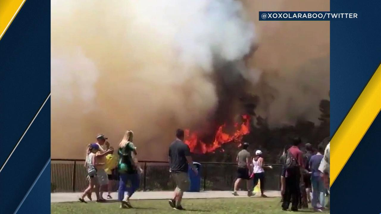 Footage shows flames from the Griffith Park Fire near the Griffith Observatory on Tuesday, July 10, 2018.
