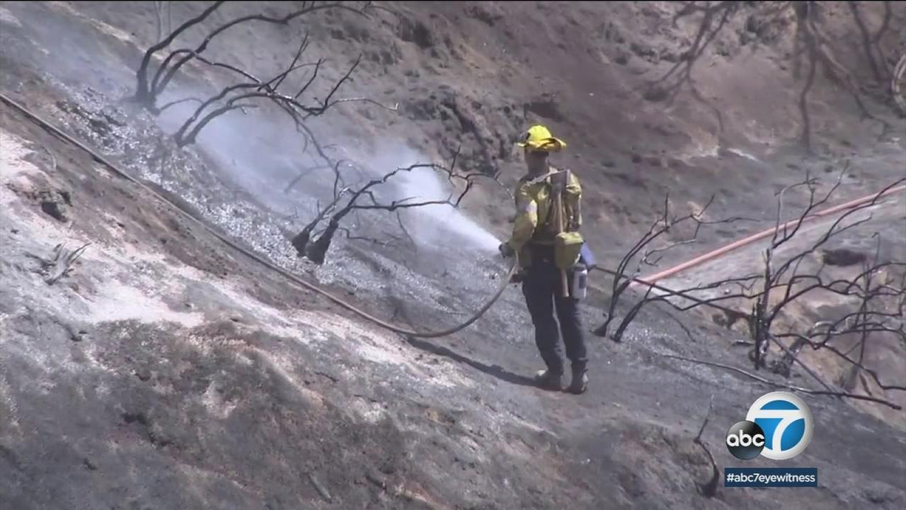 A firefighter looks for hot spots on the hillsides near Griffith Observatory in Griffith Park after a small brush fire ripped through the area the day before.