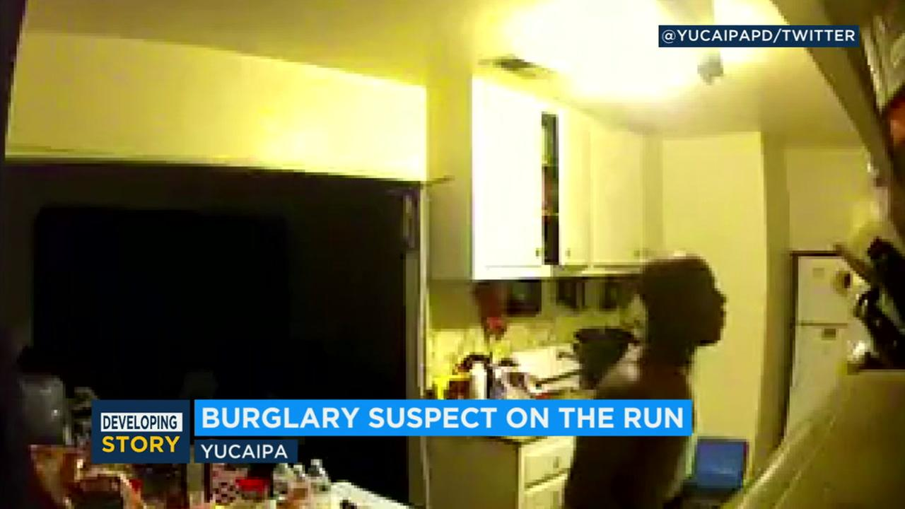 Police are asking the public to help identify a suspected burglar after video showed the person searching through the cabinets and shelves of a Yucaipa residence.