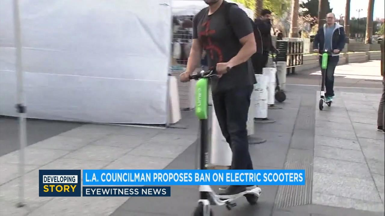 Los Angeles city Councilman Paul Koretz is trying to pump the brakes on shareable electric scooters in the city until regulations are put in place.
