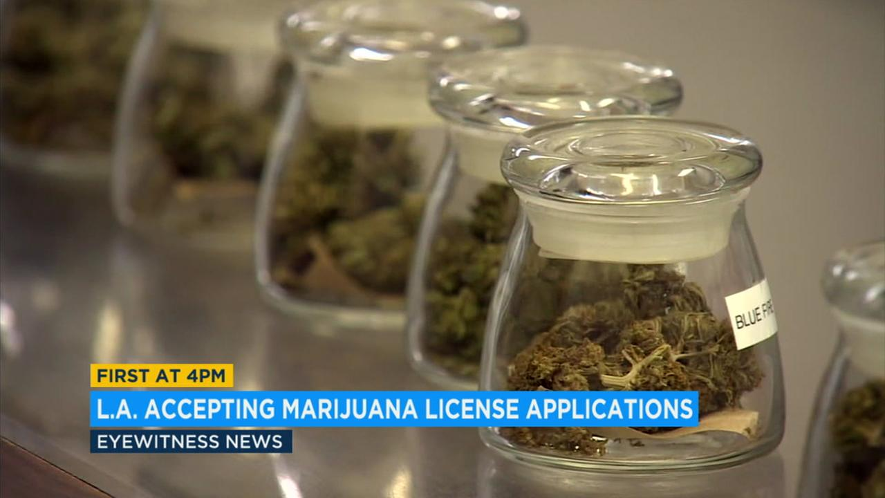 The start of the process arrived with a mix of relief and anxiety from businesses that have been waiting since Jan. 1 for cannabis to enter the legal economy.