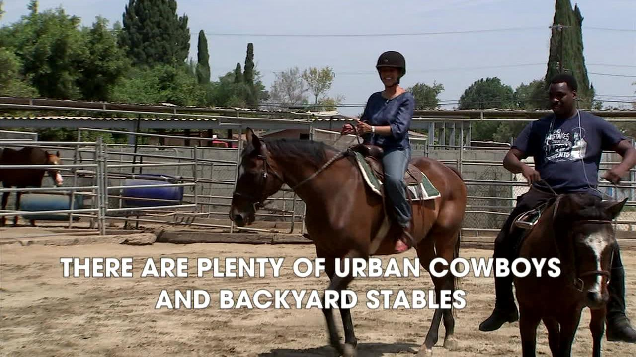 Located in the middle of Los Angeles, and known as Hub City, Compton is a horse town and so much more.