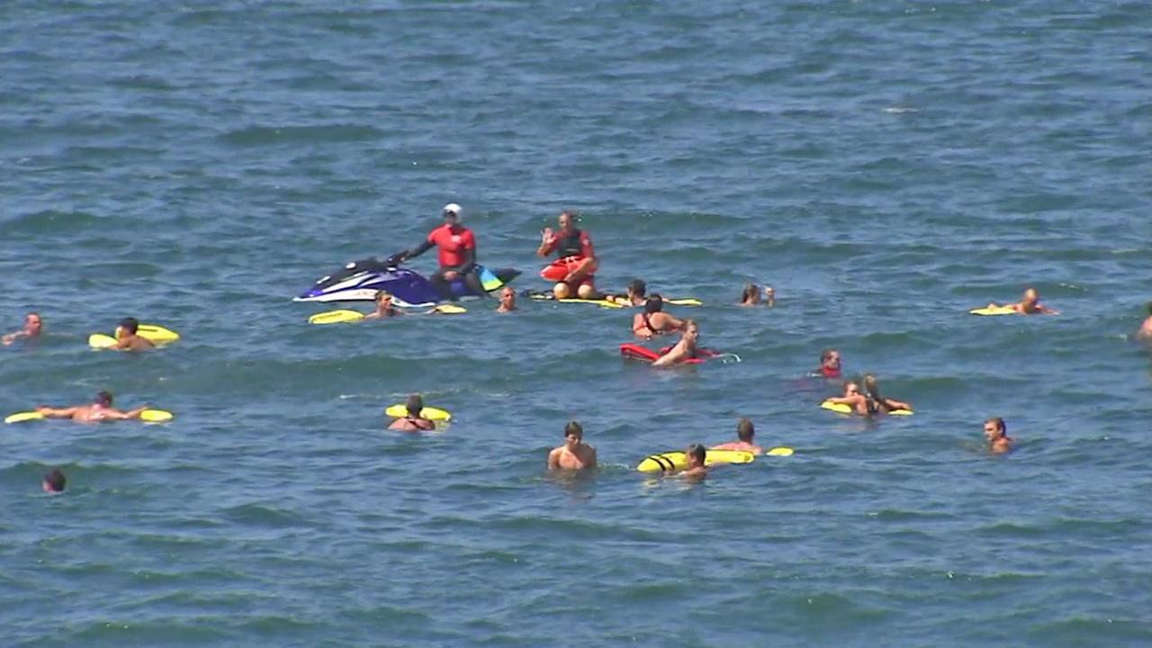 Lifeguards train in Santa Monica on Saturday, May 17, 2014.
