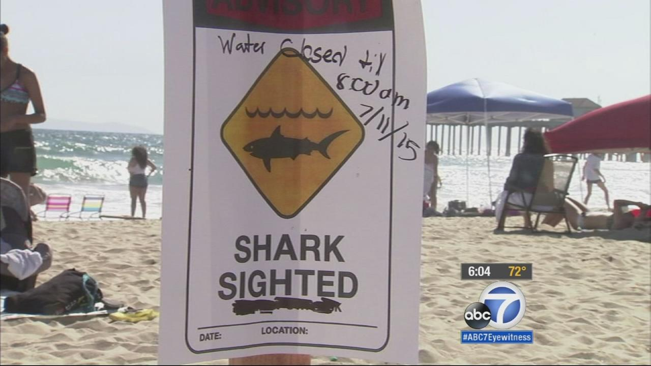 Huntington Beach lifeguards ordered beachgoers out of the water from Beach Boulevard to the Pier, after a shark bumped into a surfer on Friday.