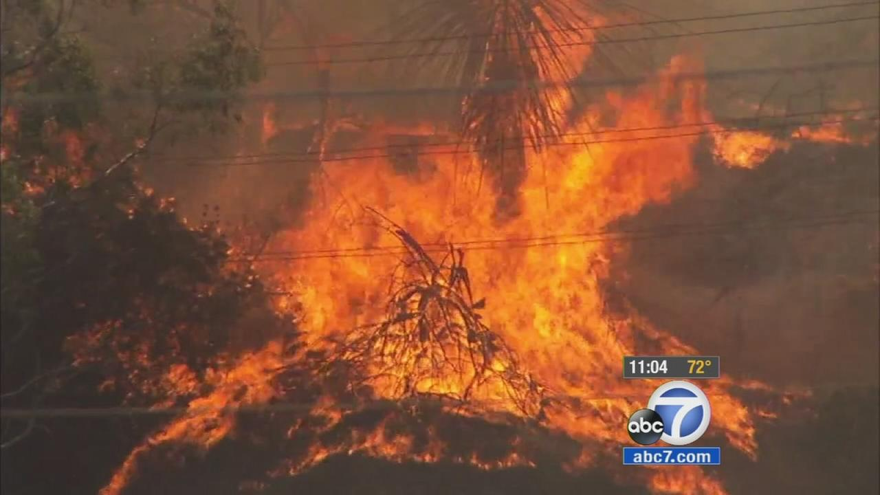 Trees and brush burn in a fire that broke out in a Montebello riverbed on Sunday, Aug. 16, 2015.
