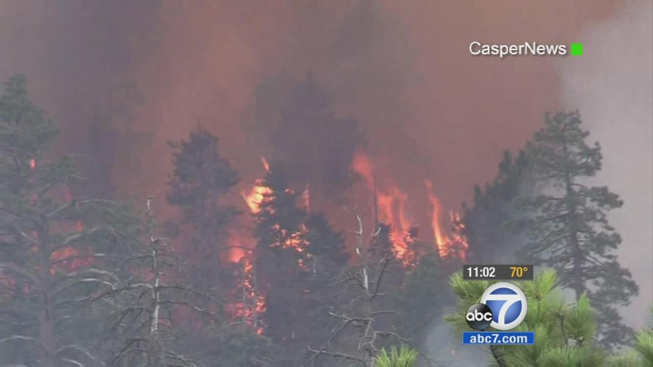 Flames burn trees and thick brush in the mountains of Big Bear on Sunday, Aug. 23, 2015.