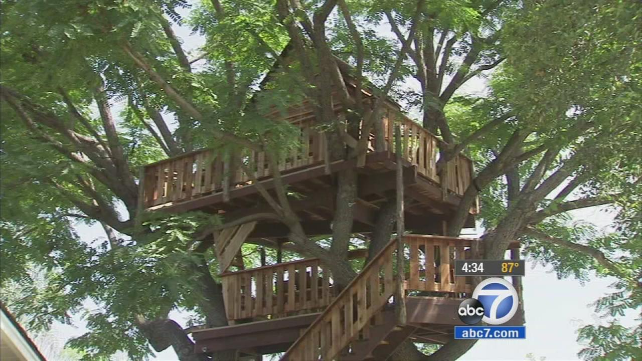 The fate of a treehouse built in memory of a father of two who died in a surfing accident is in question after Orange County issued code violations against the structure.