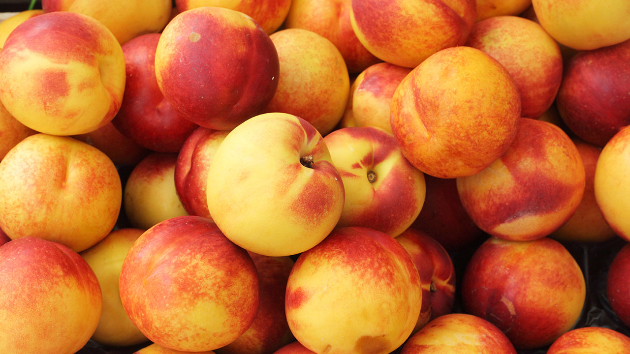 Nectarines recalled from Costcos over Listeria concerns