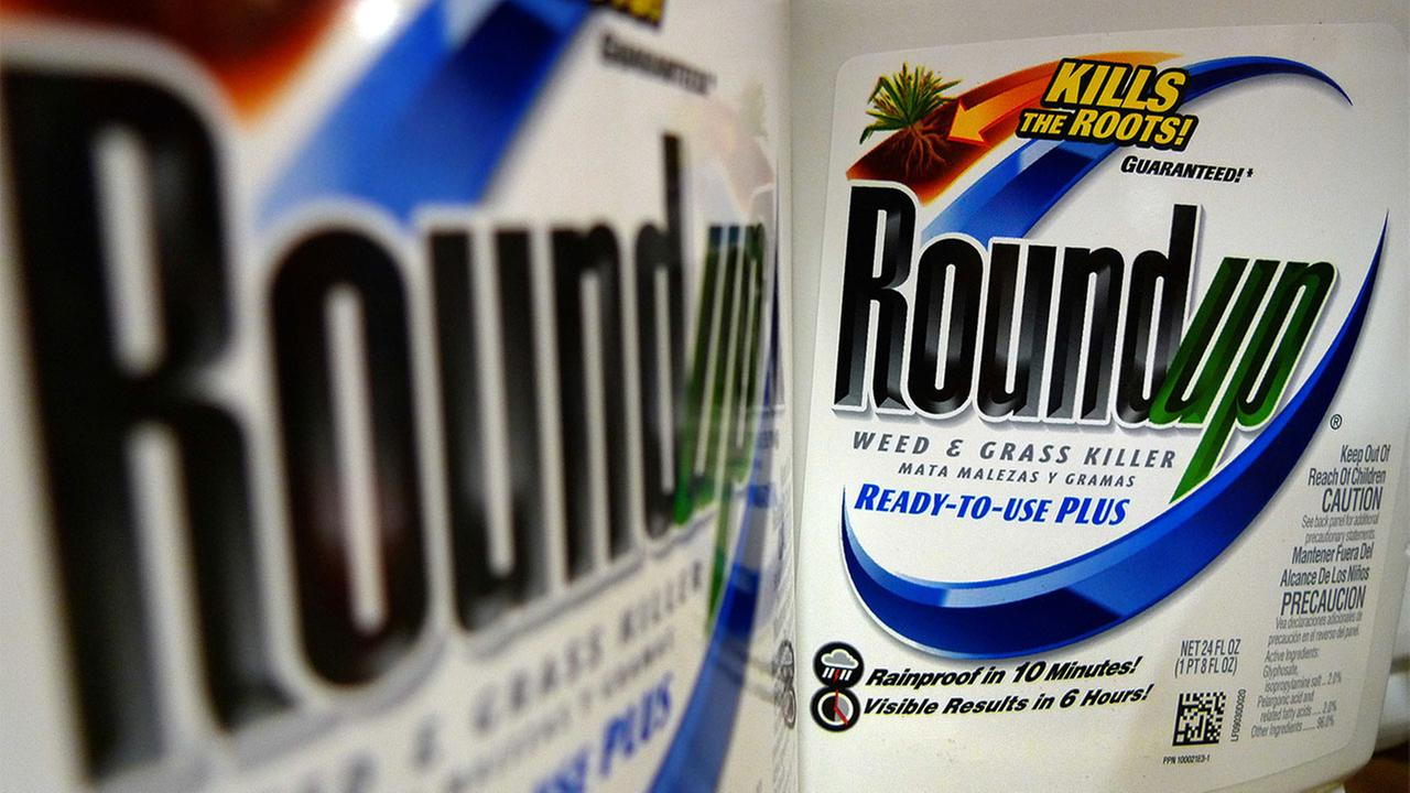 In this Tuesday, June 28, 2011, file photo, bottles of Roundup herbicide, a product of Monsanto, are displayed on a store shelf in St. Louis.