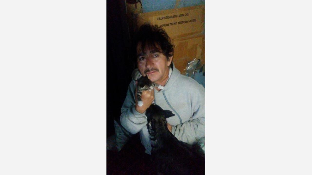 Malaga father braves the rain to rescue kitten
