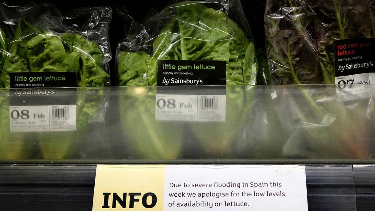 7 new E.coli cases linked to romaine lettuce outbreak
