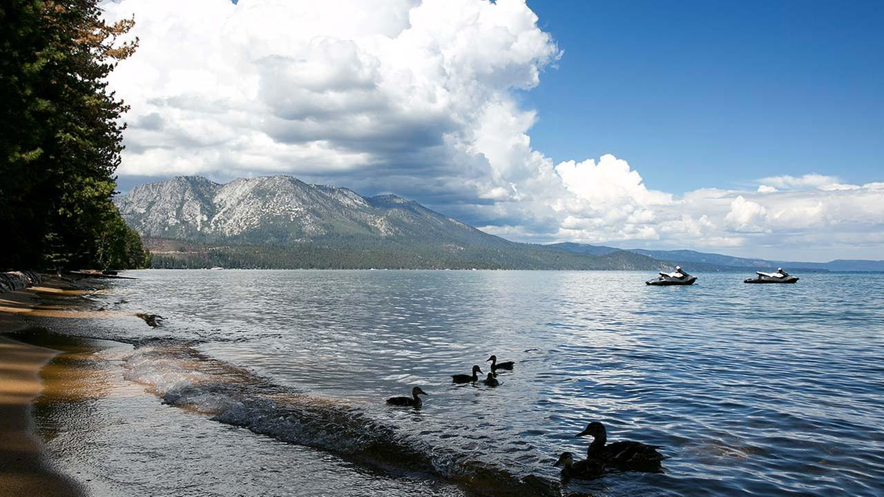 Lake Tahoe groups support fight against invasive species