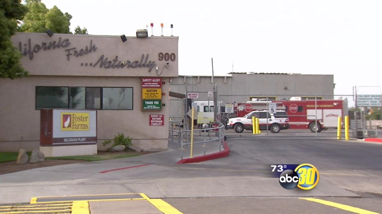 Firefighters respond to ammonia leak at Fresno Foster Farms plant