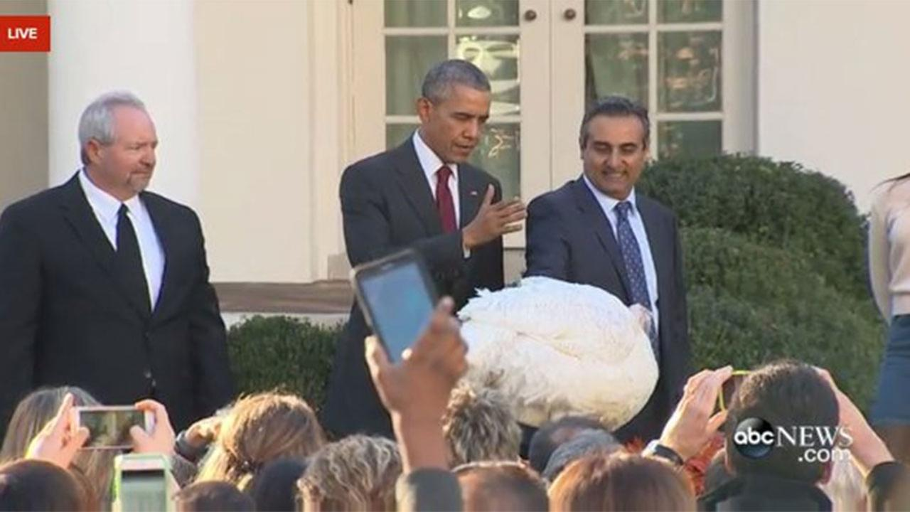 Two North Valley Turkeys pardoned by President Obama