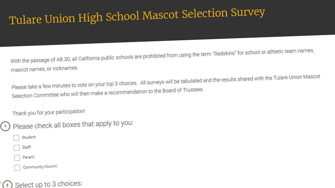 Screenshot of online survey
