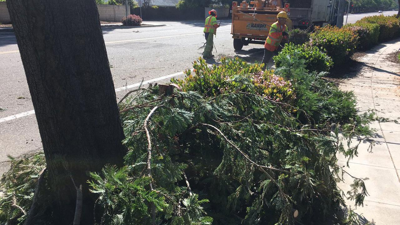 PG&E reports 2,600 customers without power in Fresno area due to wind damage