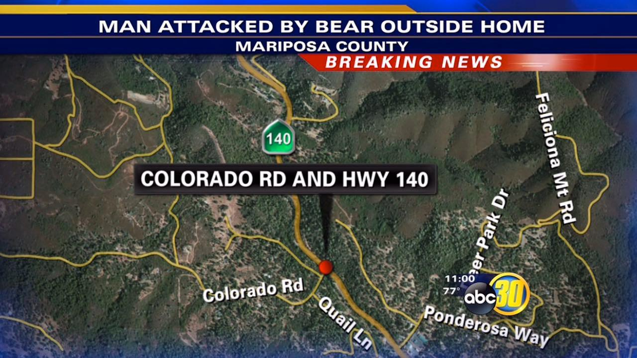 California man fights off black bear attack at his home