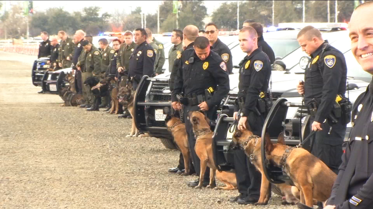 Hundreds gathered in the South Valley today to say goodbye to a K-9 with the Tulare Police Department.