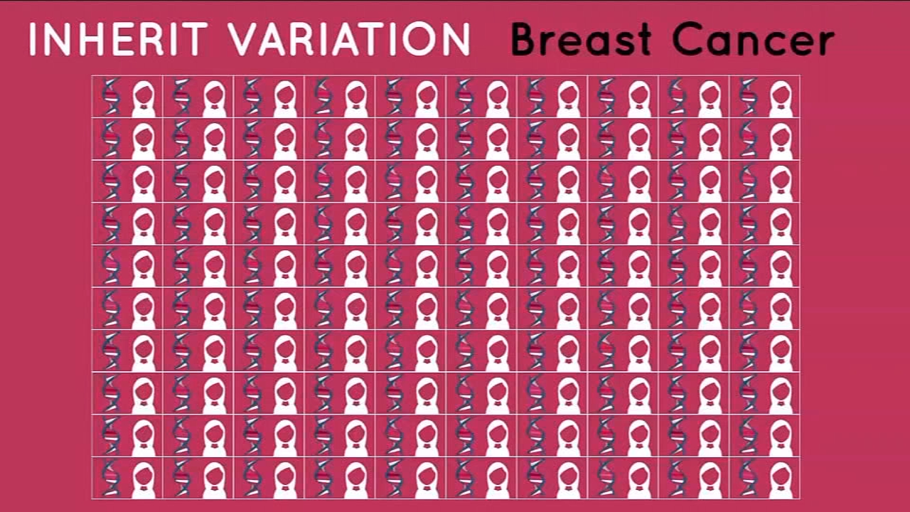 The new tool will help women learn more about breast cancers risks.